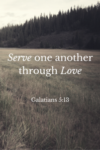 Serve one another through Love